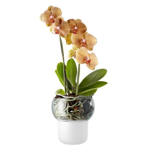 Горшок для орхидеи с функцией самополива Orchid Pot, малый, белый