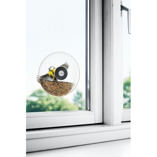 Кормушка для птиц Window Bird Feeder, прозрачная, большая
