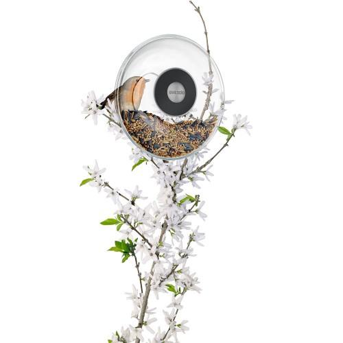 Кормушка для птиц Window Bird Feeder, прозрачная, малая