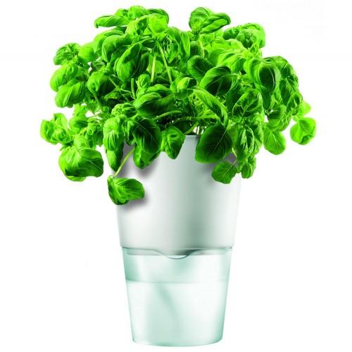 Горшок для растений Flowerpot, фарфоровый, голубой