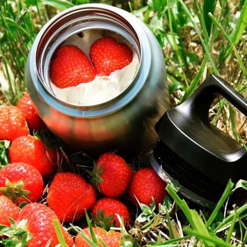 Термос для еды Hot & Cold Food Jar 500, стальной
