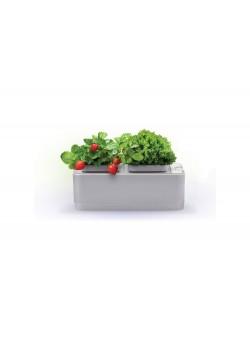 Компактный смарт-сад iGarden
