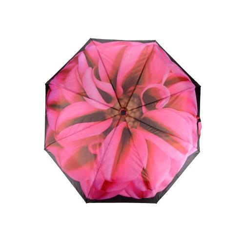 Набор Георгин, черный/розовый